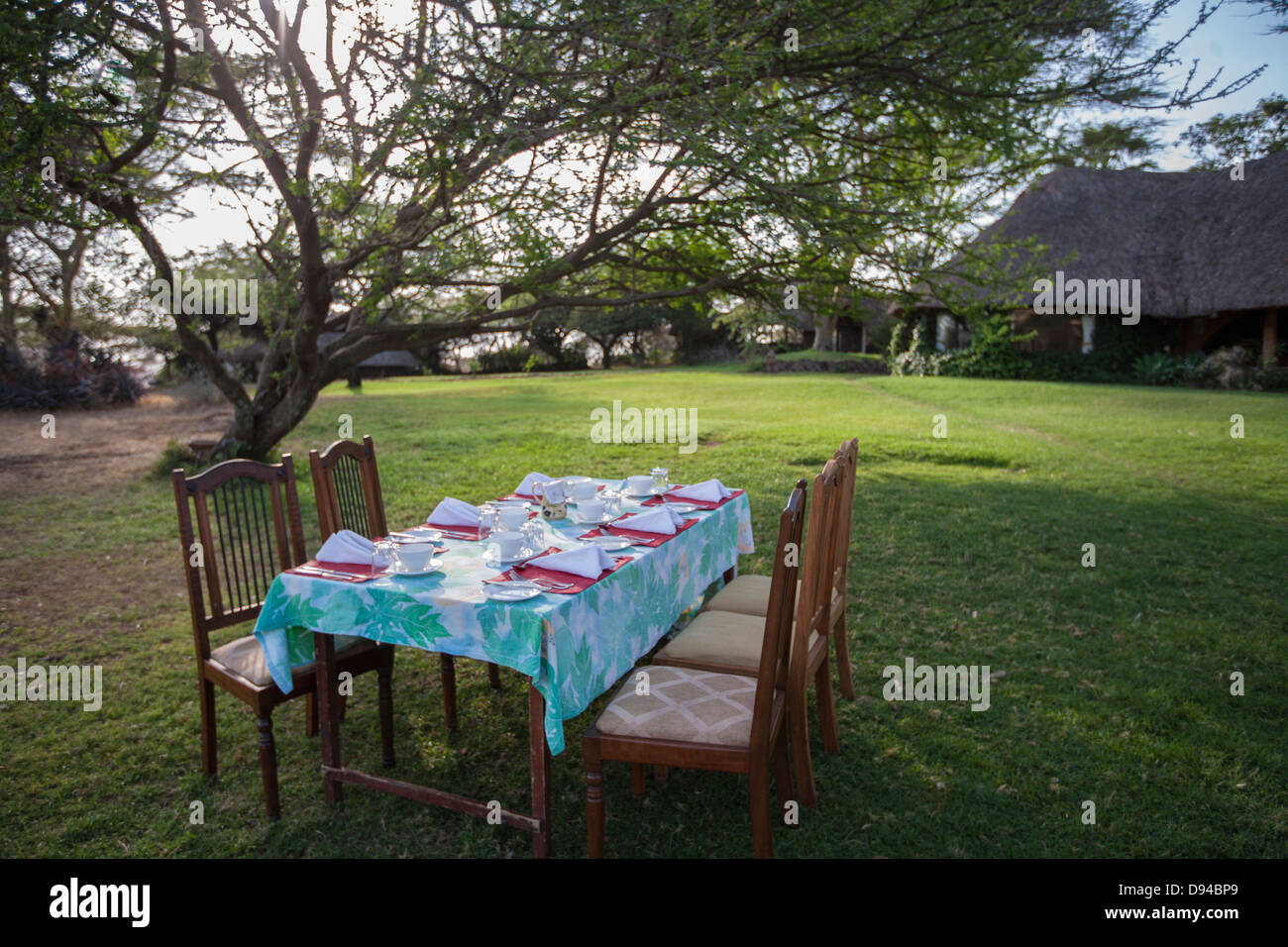 outdoor table setting on a grassy lawn under a tree - Stock Image