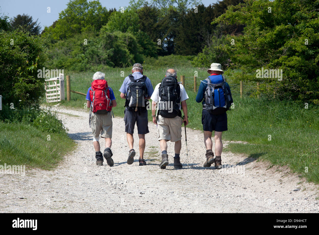 Walkers on the South Downs Way at Bignor Hill, West Sussex, UK, part of the Slindon Estate - Stock Image