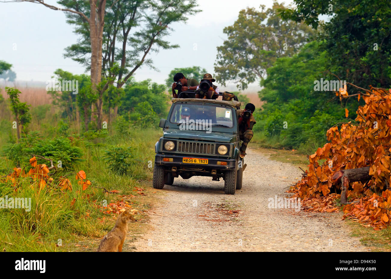 vehicle,Outdoor,People,Nature,Land vehicle,Non urban scene,Travel Locations,Wildlife tour,People traveling,Wildlife - Stock Image