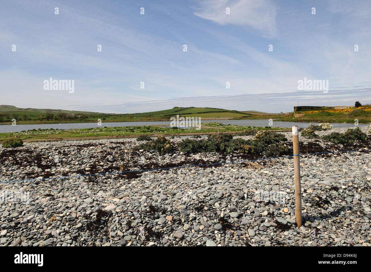 Roped off area on Cemlyn Nature Reserve to protect nesting birds Anglesey Wales Cymru  UK GB Stock Photo