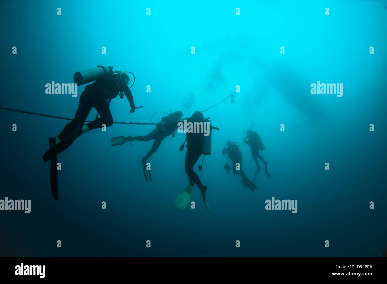 Divers make their way to the surface though murky water from the Miwali wreck, Lembeh Straits, North Sulawesi, Indonesia - Stock Image