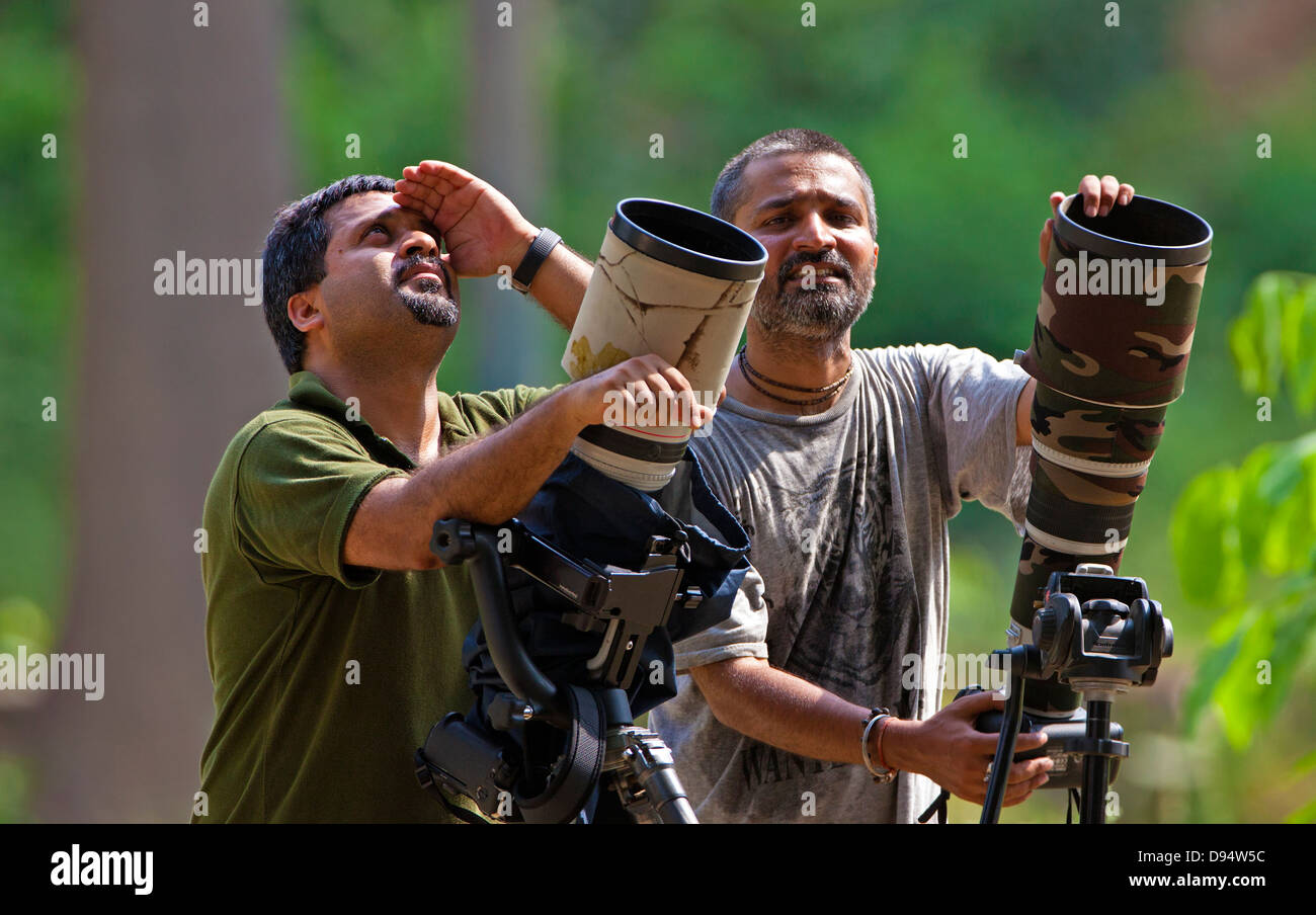 Professional Wildlife  photographer,India - Stock Image
