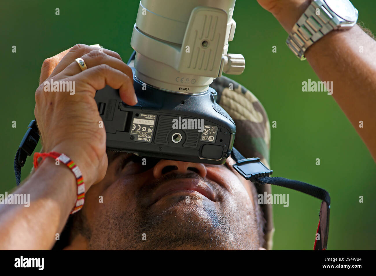 Photographer concentrates on getting picture of the birds - Stock Image