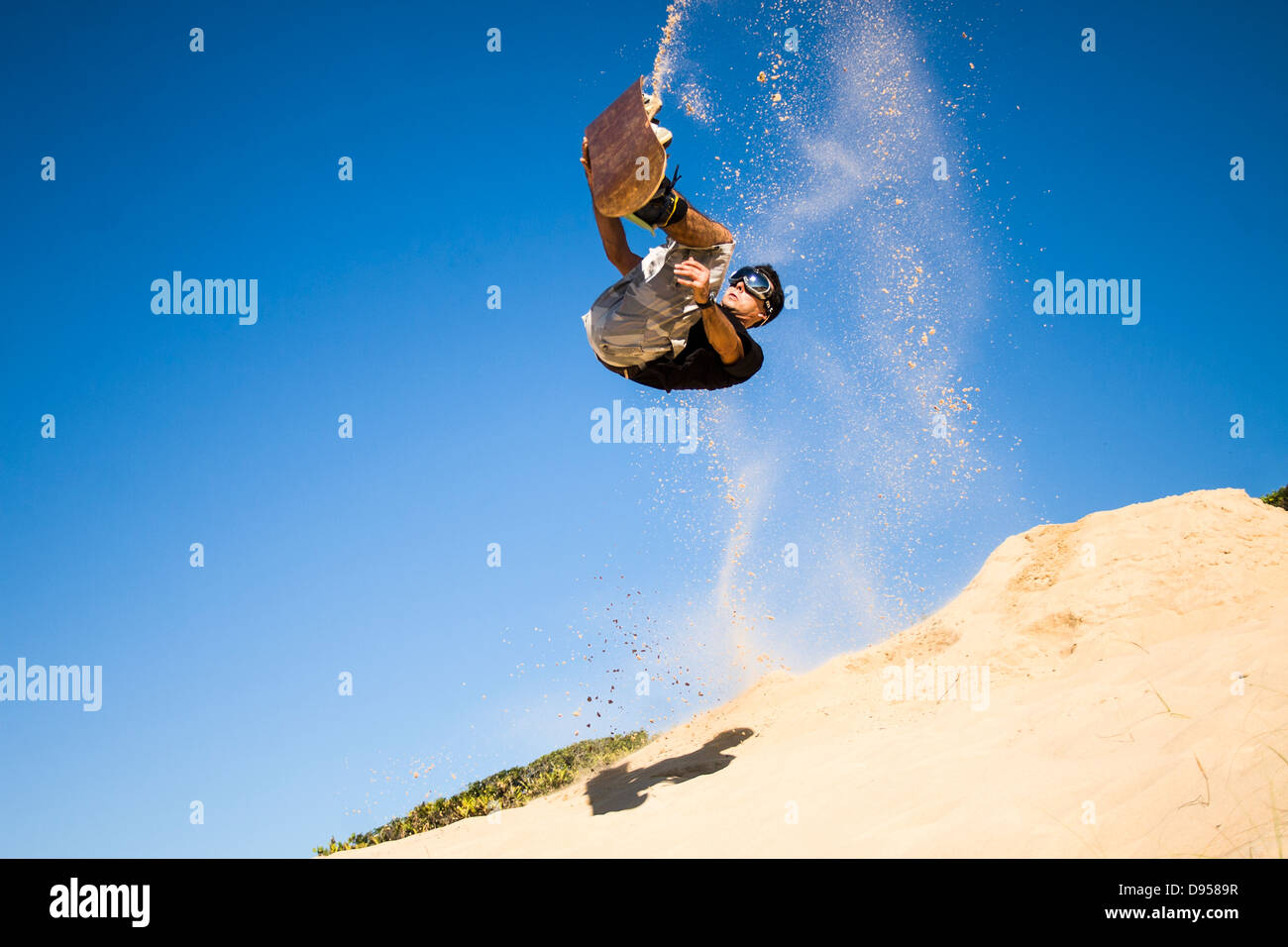 Sandboarder doing a front flip against cloudless blue sky and holding his board on the dunes of Praia Grande. - Stock Image