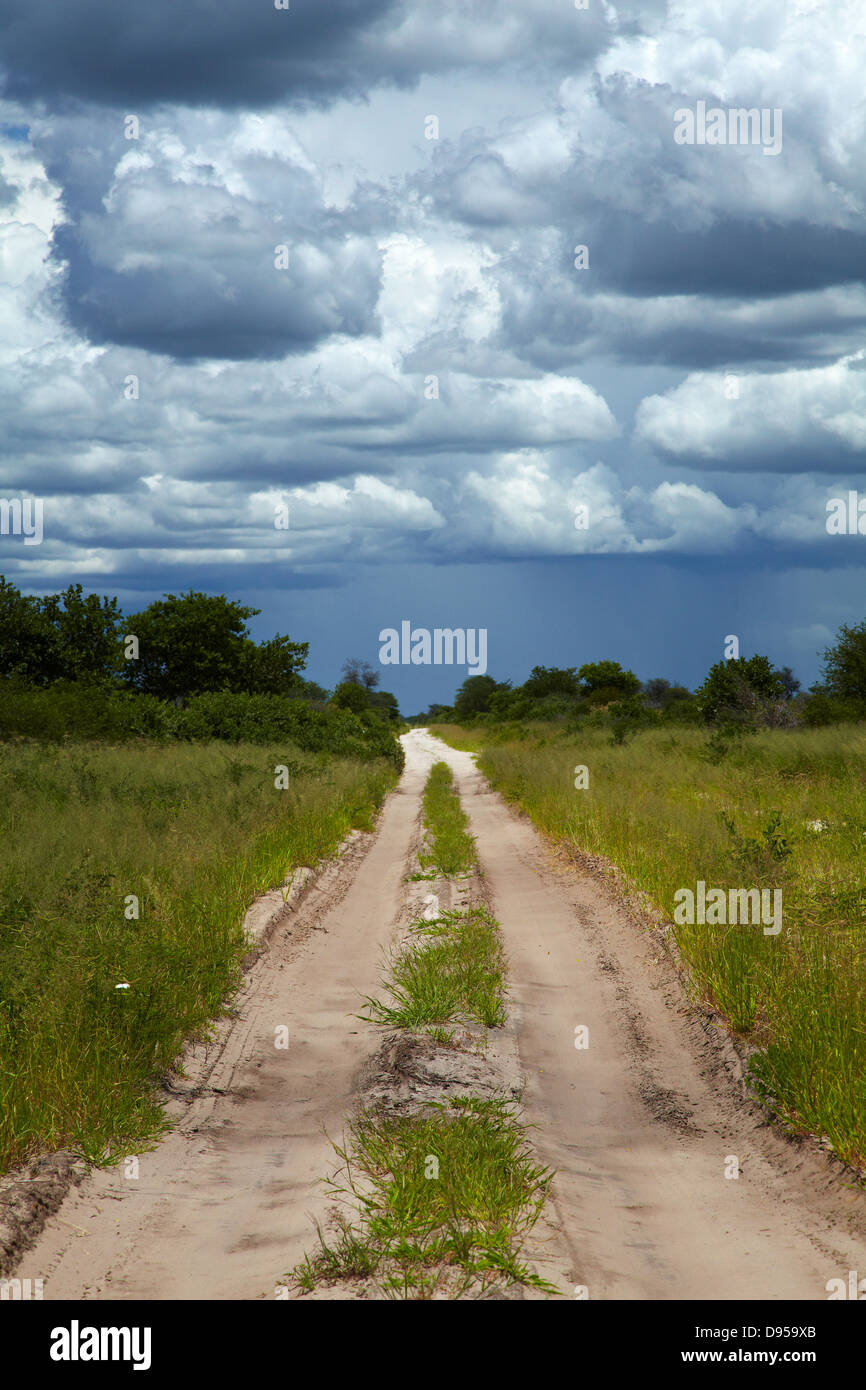 Track from Dobe Border to Nokaneng, and storm clouds, North-western Botswana, Africa - Stock Image