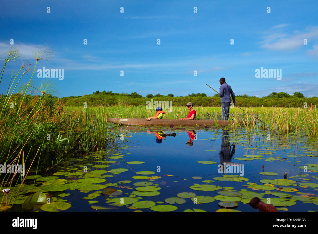 Tourists being poled though lily pads in mokoro (dugout canoe), Okavango Delta, Botswana, Africa - Stock Image
