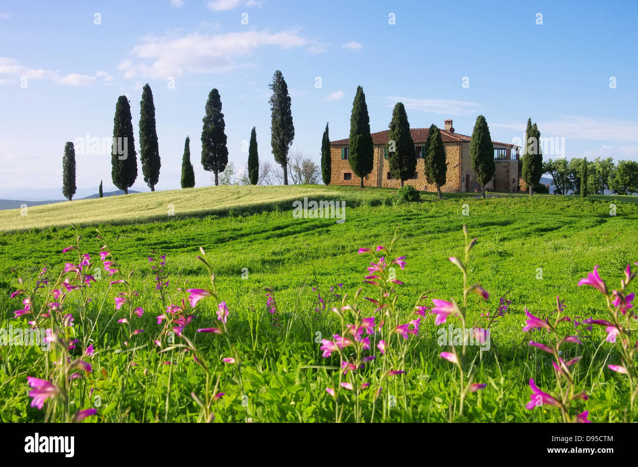 Toskana Haus Mit Blumen   Tuscany House And Flowers 03   Stock Image