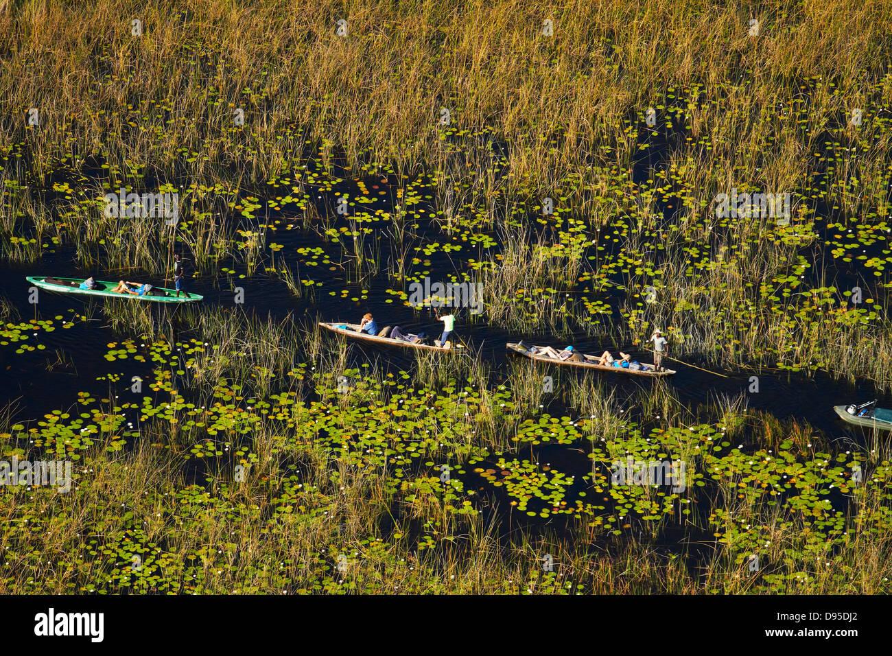 Tourists in mekoro (dugout canoes), Okavango Delta, Botswana, Africa- aerial - Stock Image