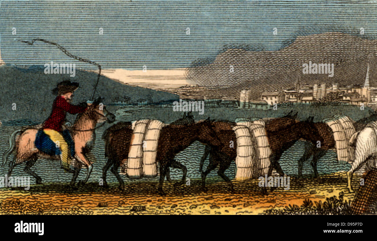 A train of pack horses carrying bolts (lengths) of woollen cloth for sale in the Cloth Hall, Leeds. At this date - Stock Image