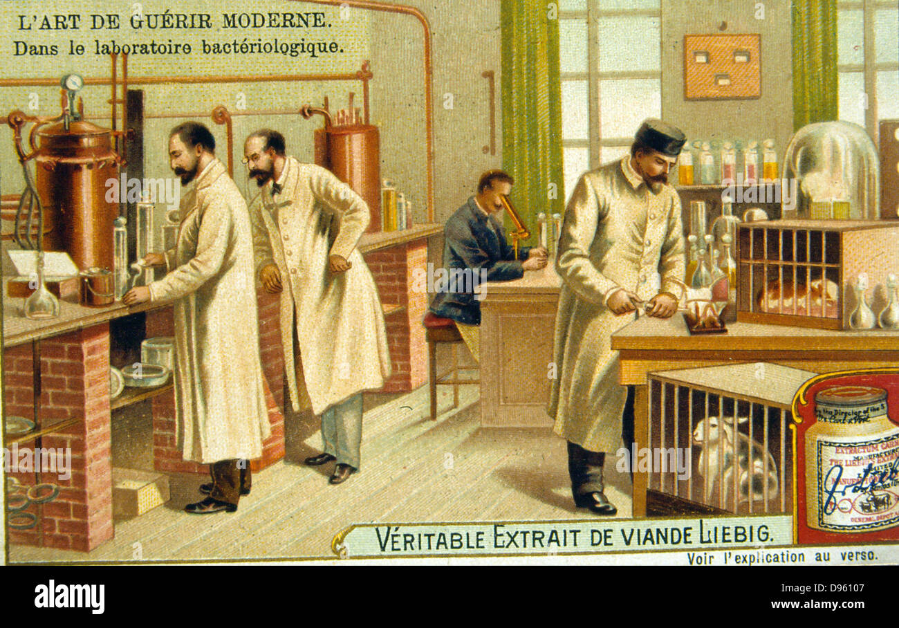Bacteriological laboratory, France, 1890s. Chromolithograph c1900. - Stock Image
