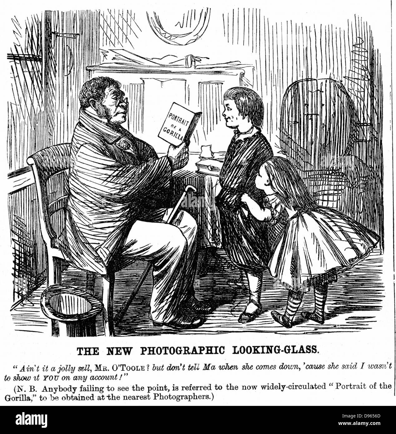 Darwinism: everyday proof of man's origins. Cartoon from 'Punch' (London, 1861). Wood engraving. - Stock Image