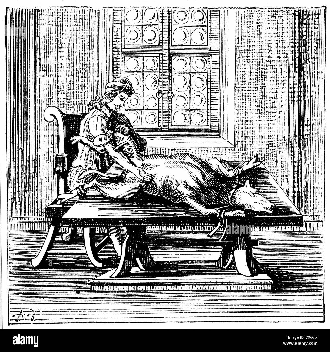 Animal-to-man blood transfusion: In both England and France this procedure was tried using lambs and calves.  After - Stock Image