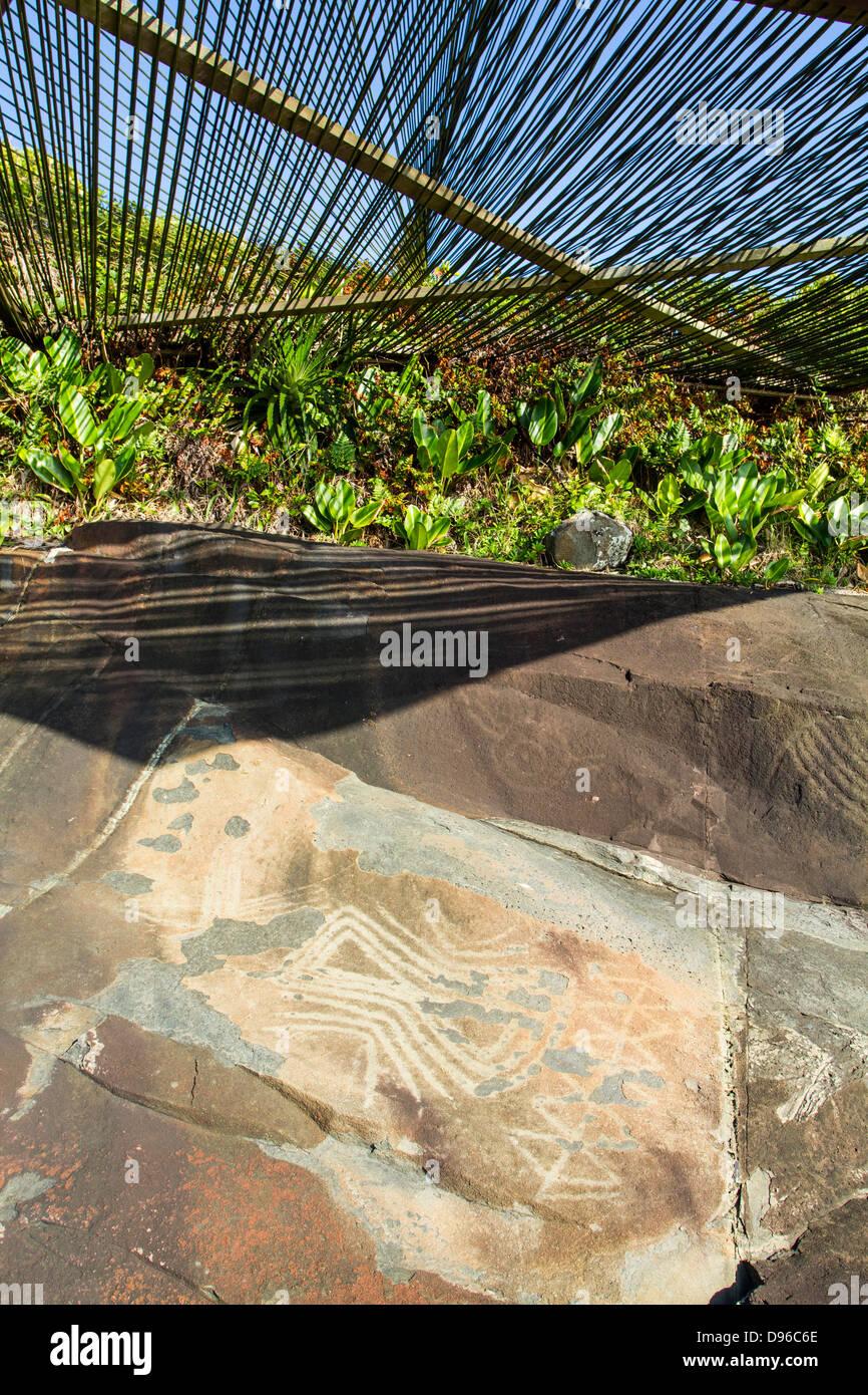Primitive drawings on the rocks next to Costao do Santinho Resort, in Santinho Beach. - Stock Image
