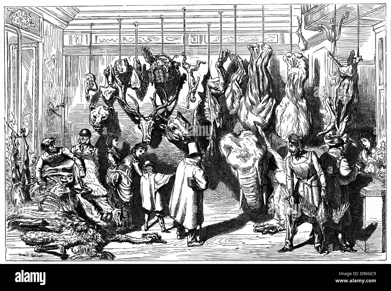 Franco-Prussian War 1870-1871: Siege of Paris September 1870 to late January 1871.  An English butcher's Boulevard Haussmann, with meat from animals  from the Jardins des Plantes (Paris Zoo) for sale, including elephant.  Wood engraving. Stock Photo