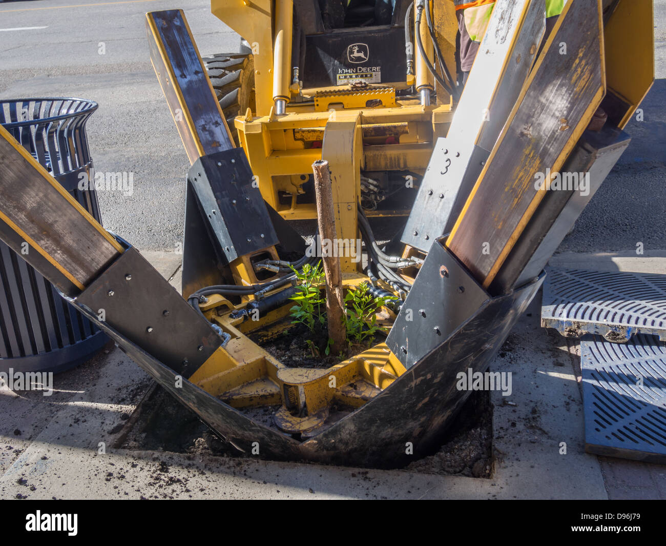machine uprooting tree from ground - Stock Image