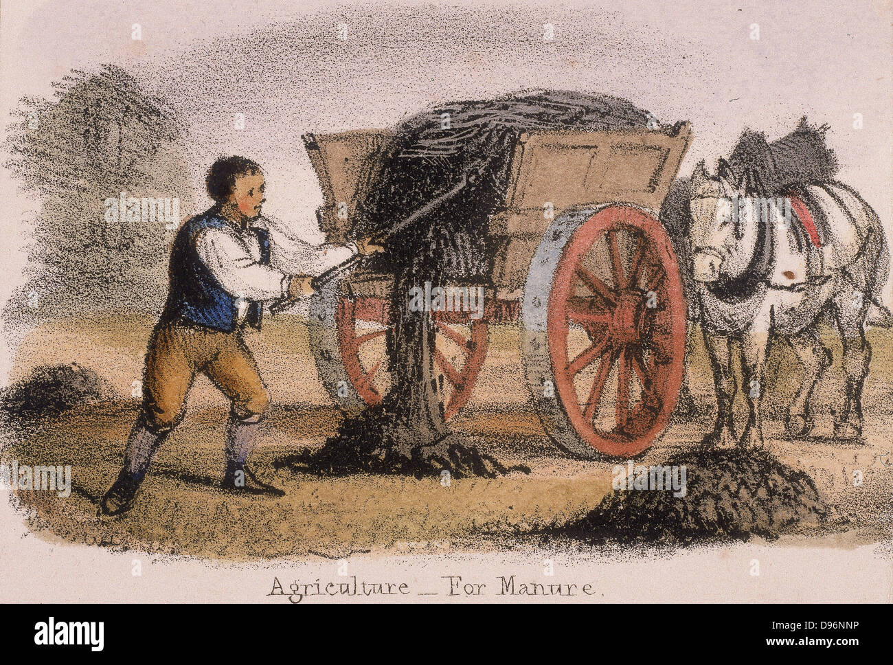 The manure cart. From 'Graphic Illustrations of Animals and Their Utility to Man', London, c1850. - Stock Image