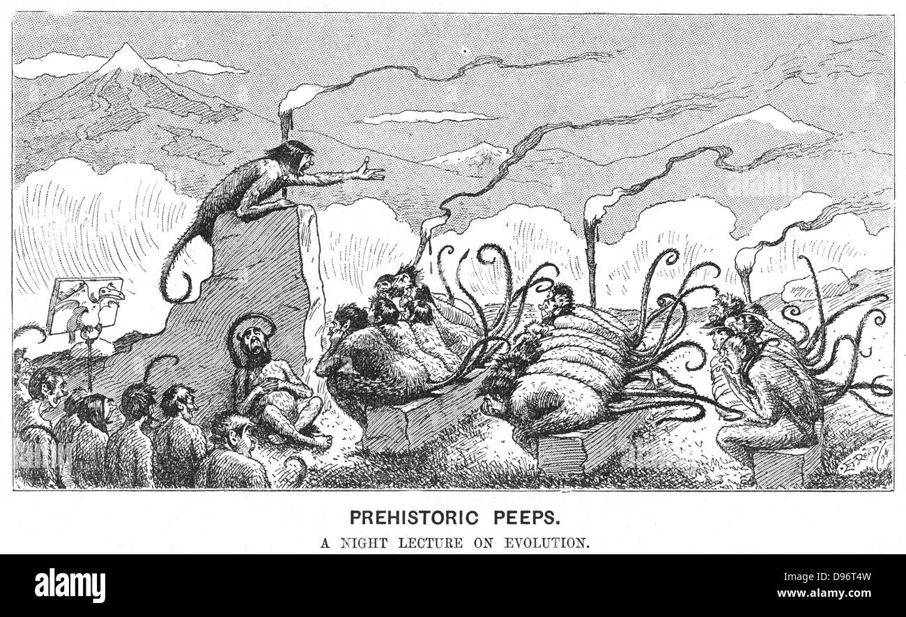 Prehistoric Peeps: Monkeys attending an evening lecture. Cartoon on evolution from 'Punch', London, 23 June - Stock Image