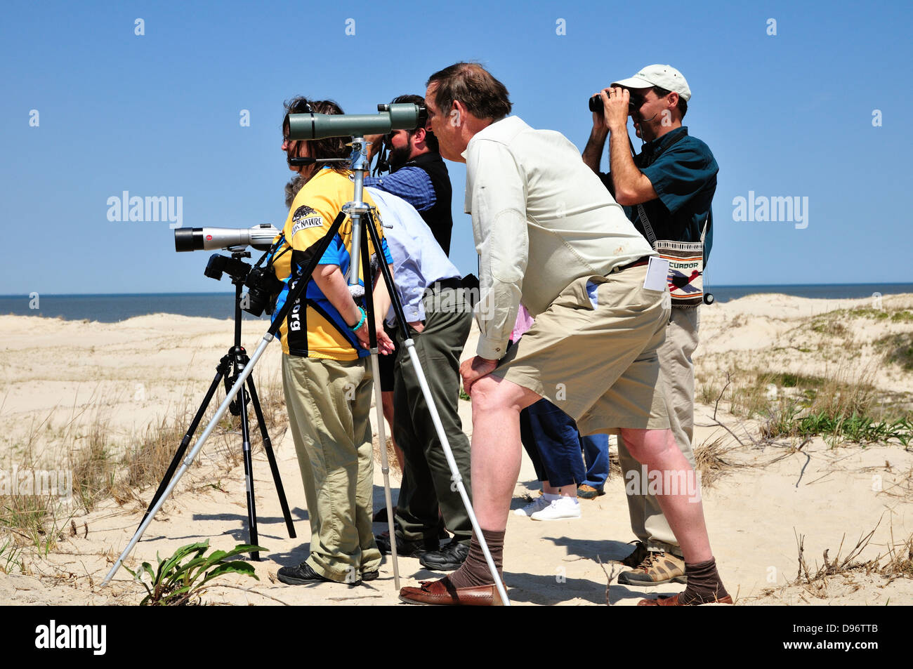 Bird watchers at Cape Henlopen State Park, Lewes, Delaware - Stock Image