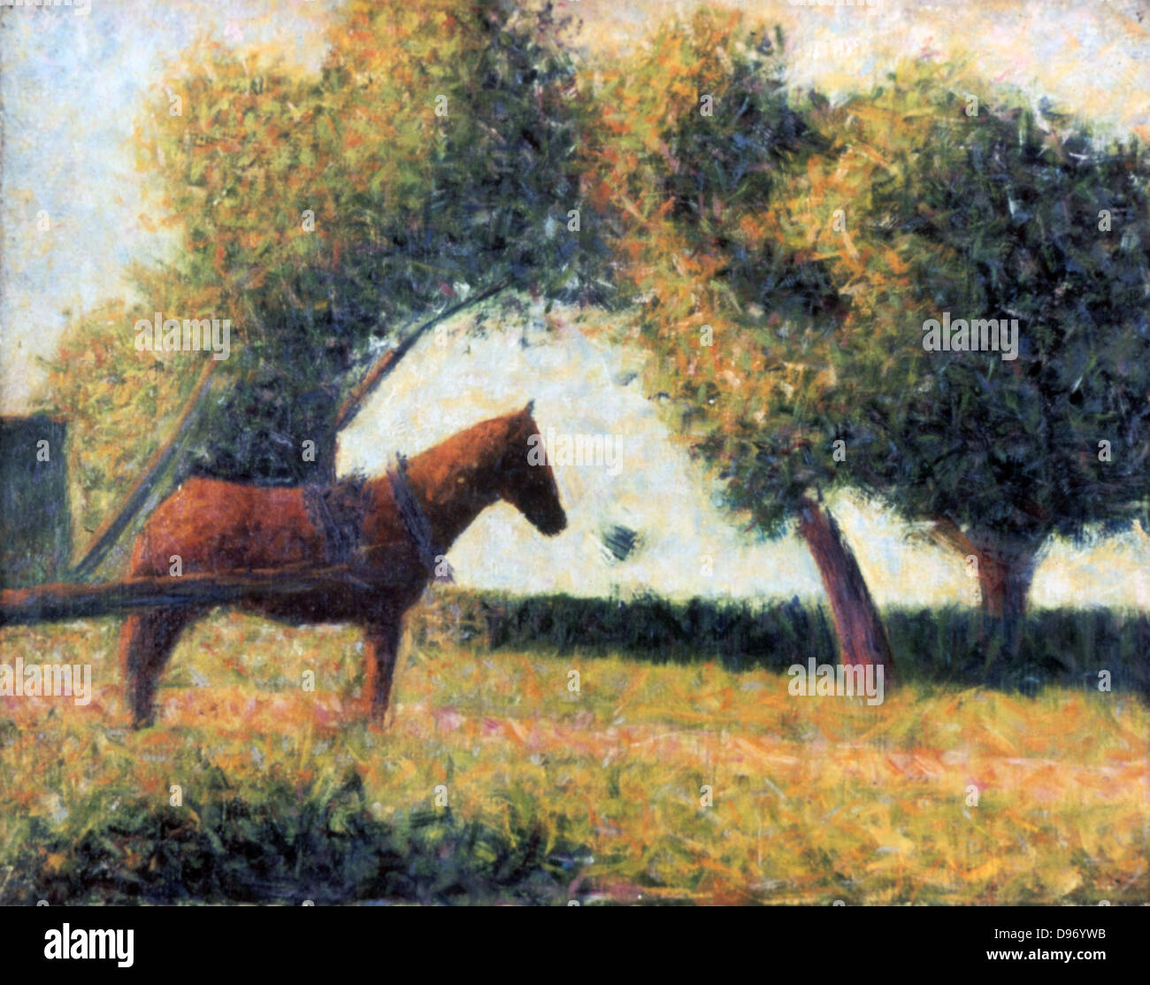 Horse in a Field' 1883: Georges Pierre Seurat (1859-1891) French artist. - Stock Image