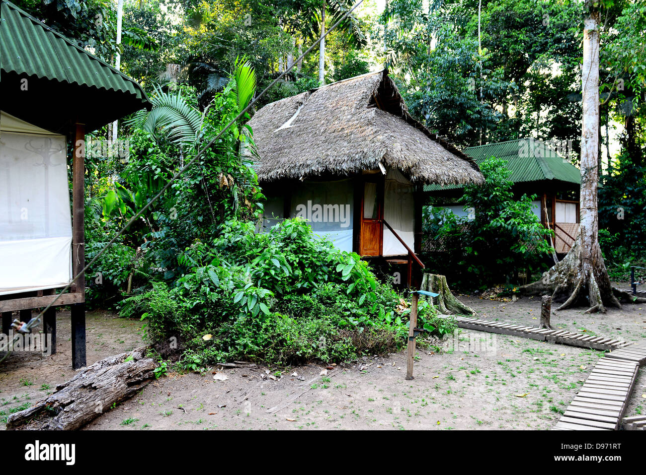 Ornithologists' scientific camp in the jungles of Peru. - Stock Image