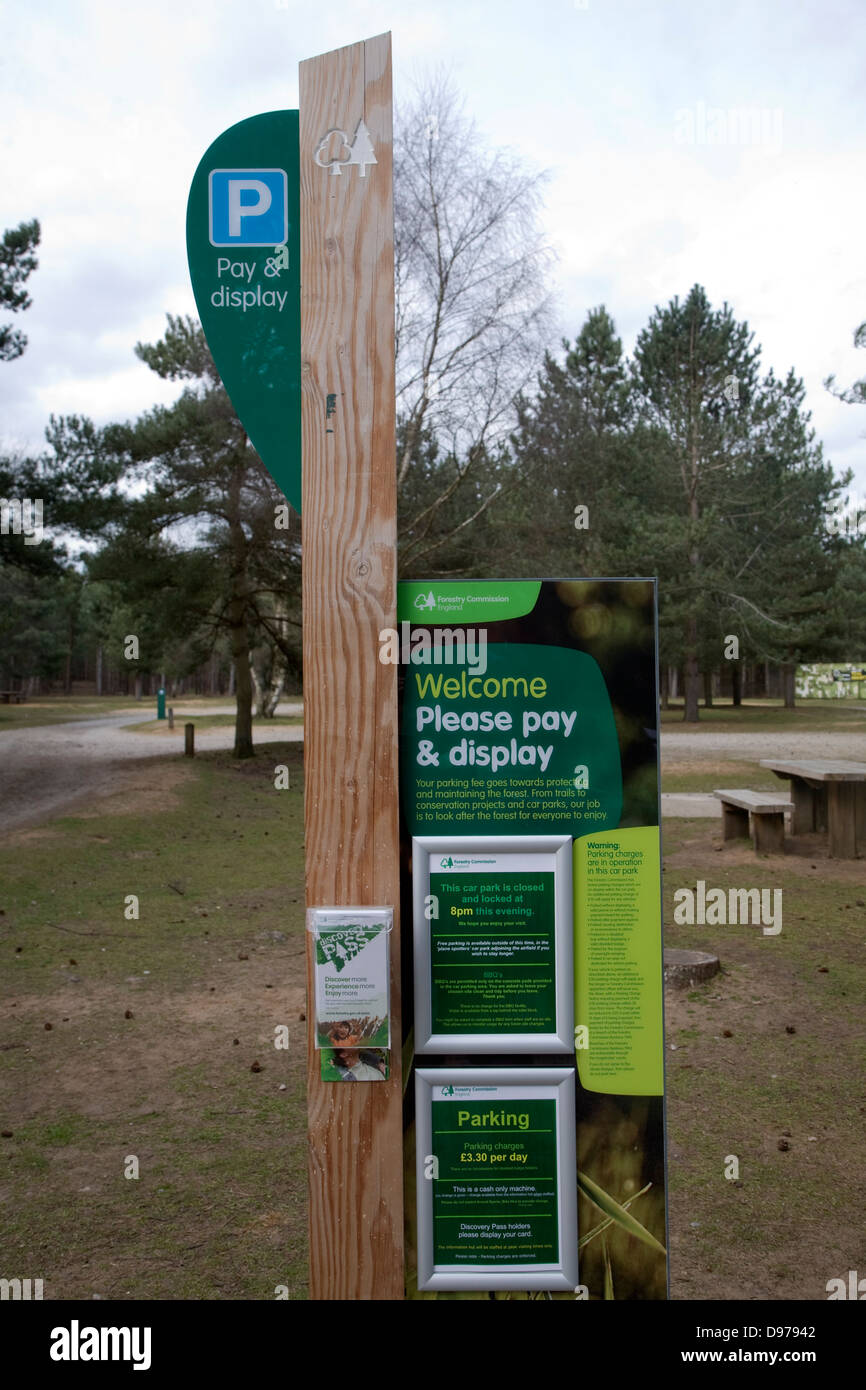 Parking meter in Forestry Commission land, Rendlesham Forest, Suffolk, England - Stock Image