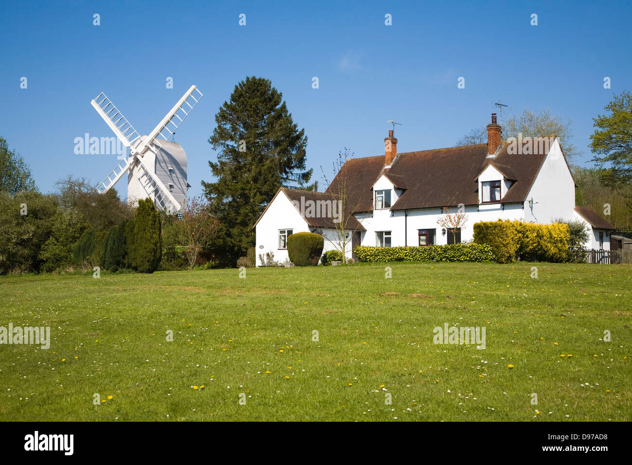 Housing and windmill in the attractive village of Finchingfield, Essex, England - Stock Image