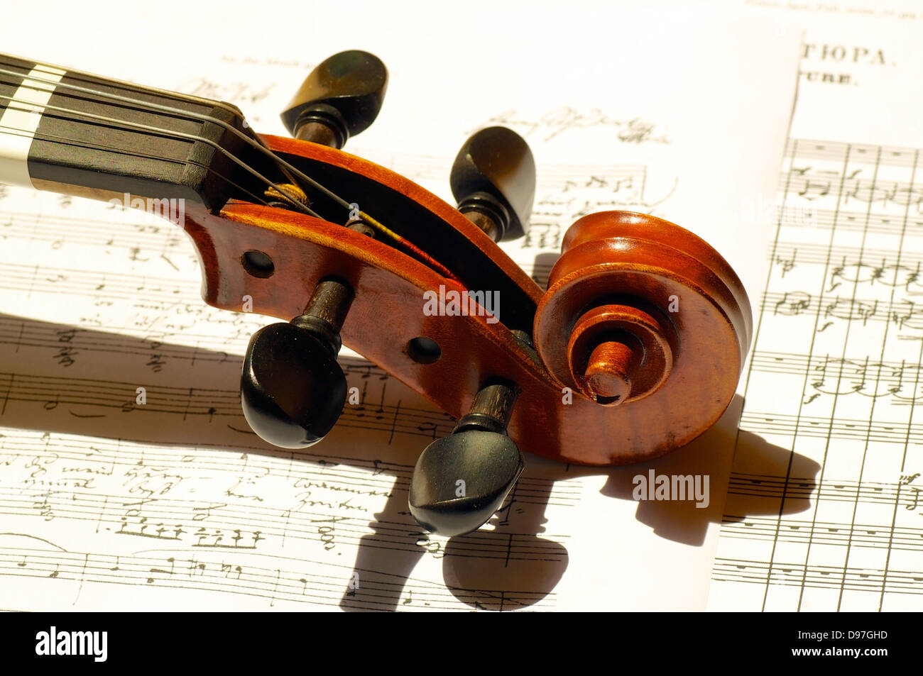 Scroll, peg and part of neck of a beautiful violin - Stock Image