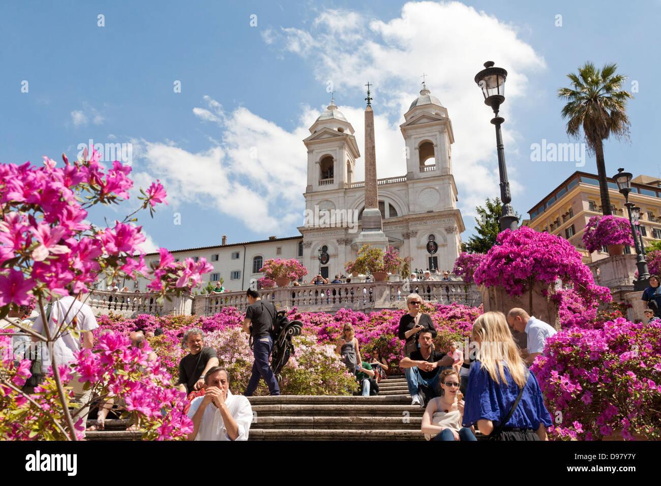 Pots of azaleas in blossom, Spanish Steps, Scalinata della Trinita dei Monti, Piazza di Spagna, Rome, Italy - Stock Image