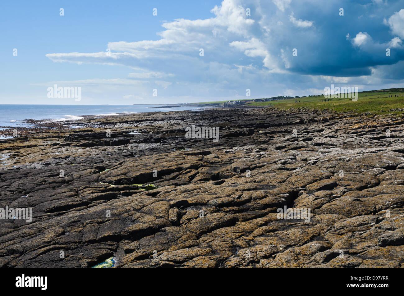 Cushat Stiel Rocks, Northumberland - Stock Image