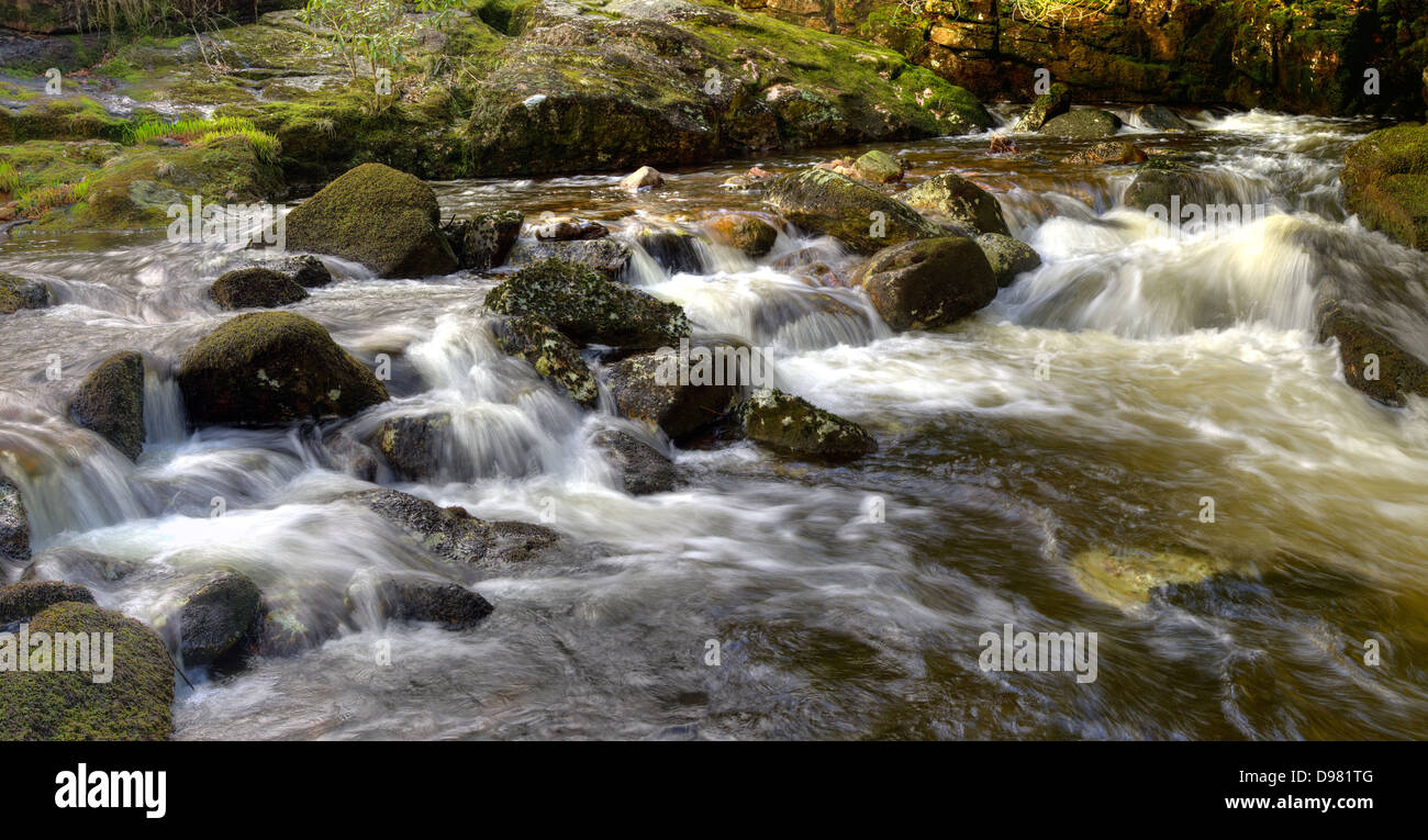 The spring rains of the River Aune (or Avon) here descend through the gorge above Shipley Bridge in Dartmoor National Stock Photo