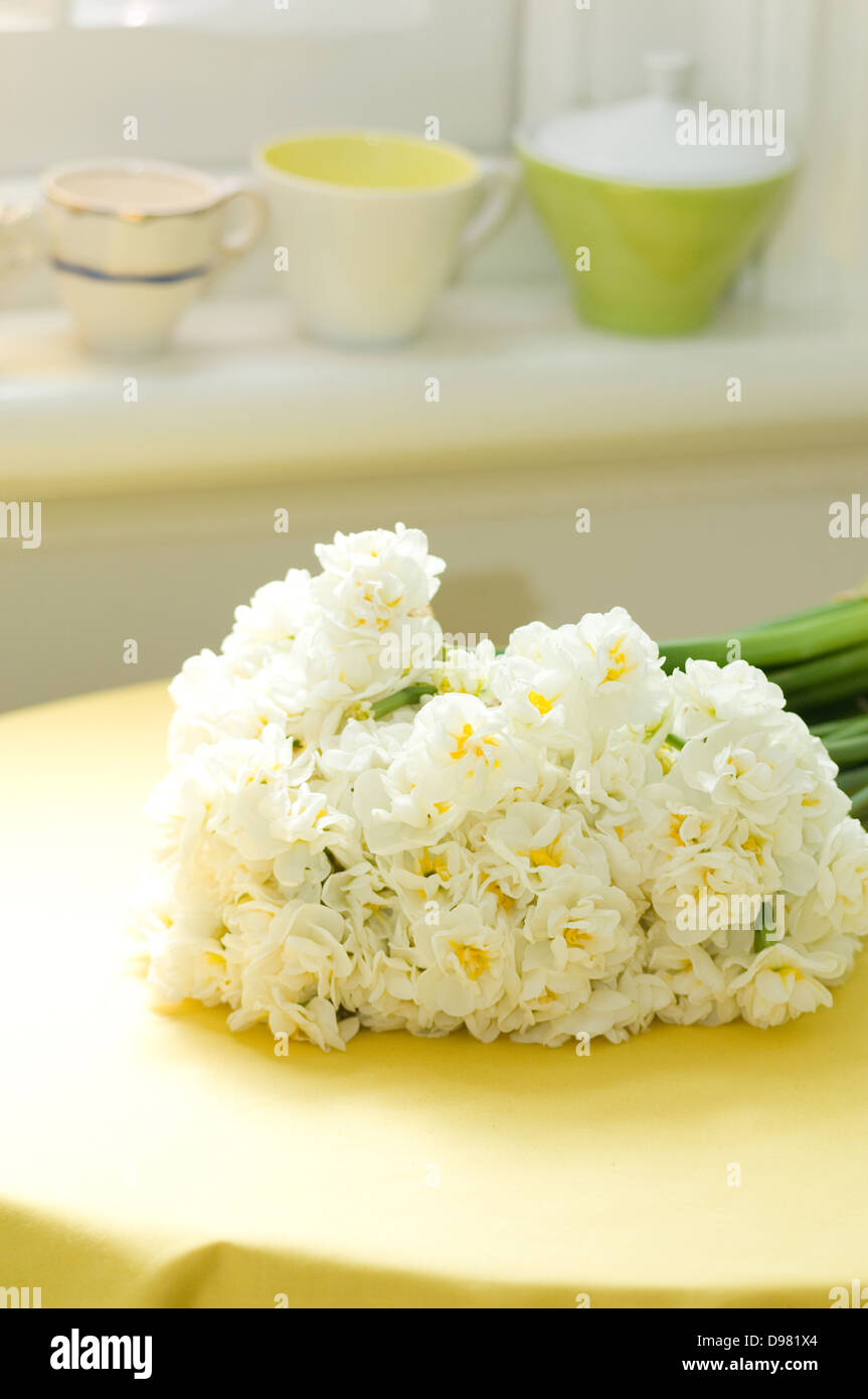 Portrait shot of a bunch of white Jonquils/Narcissus by a window on a yellow tablecloth. Stock Photo