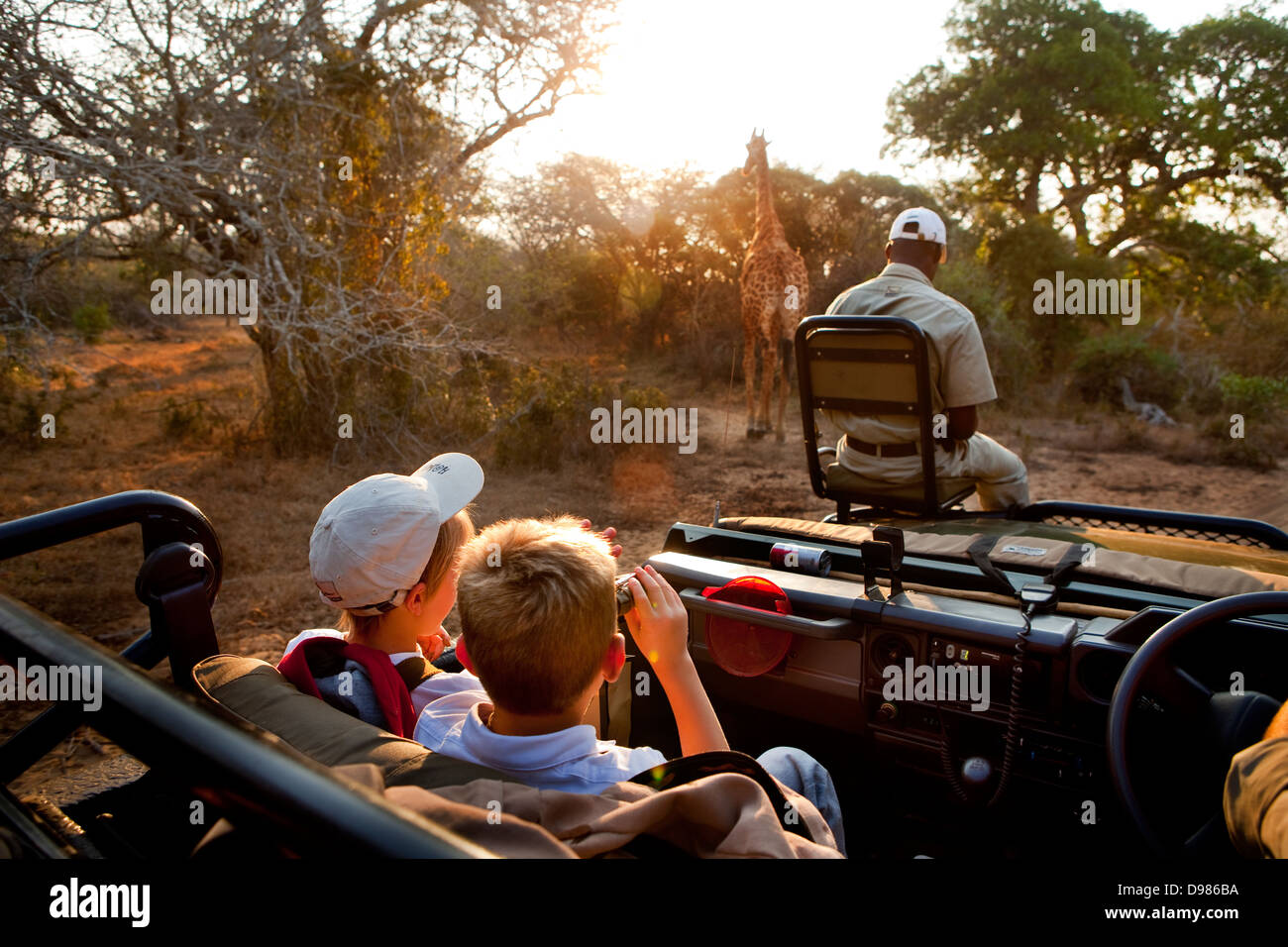 Robin Tetlow Shooter with Tyler Talmage viewing a giraffe from a safari land cruiser in the Phinda Game Reserve - Stock Image