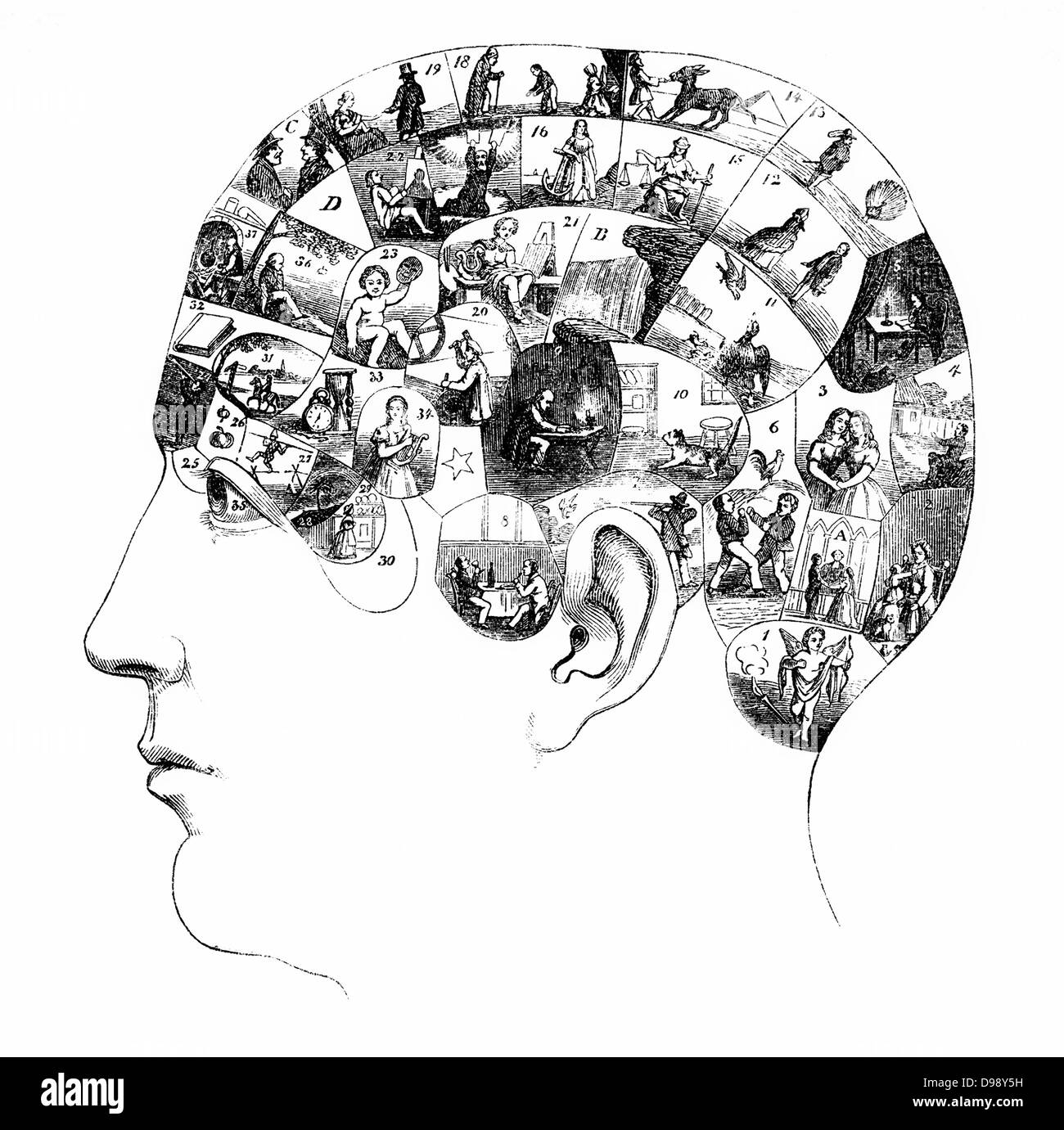 The human brain with activities in various cortical areas, people picture from the 19th Century, 1864, Germany, - Stock Image