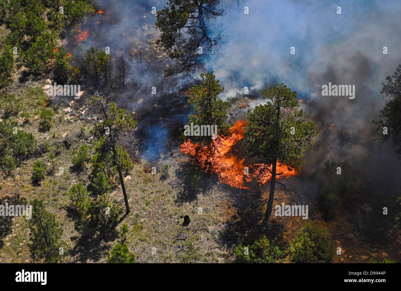 Aerial view of smoke and fire around a home caused by the Black Forest Fire June 12, 2013 near Colorado Spring, - Stock Image