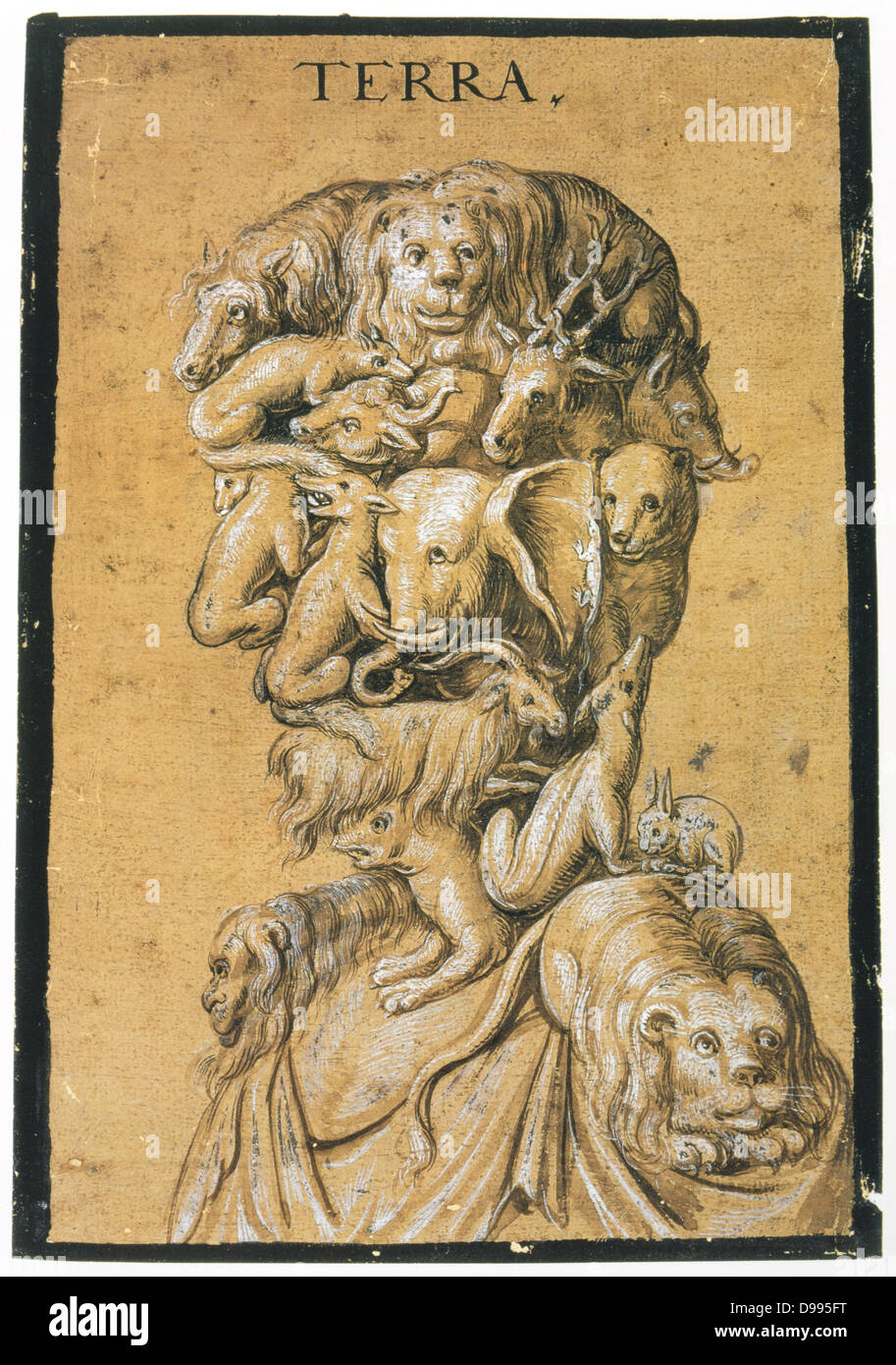 Earth', c1600. Tempera in brown and white on tinted paper. Anonymous. Grotesque head and shoulders composed - Stock Image