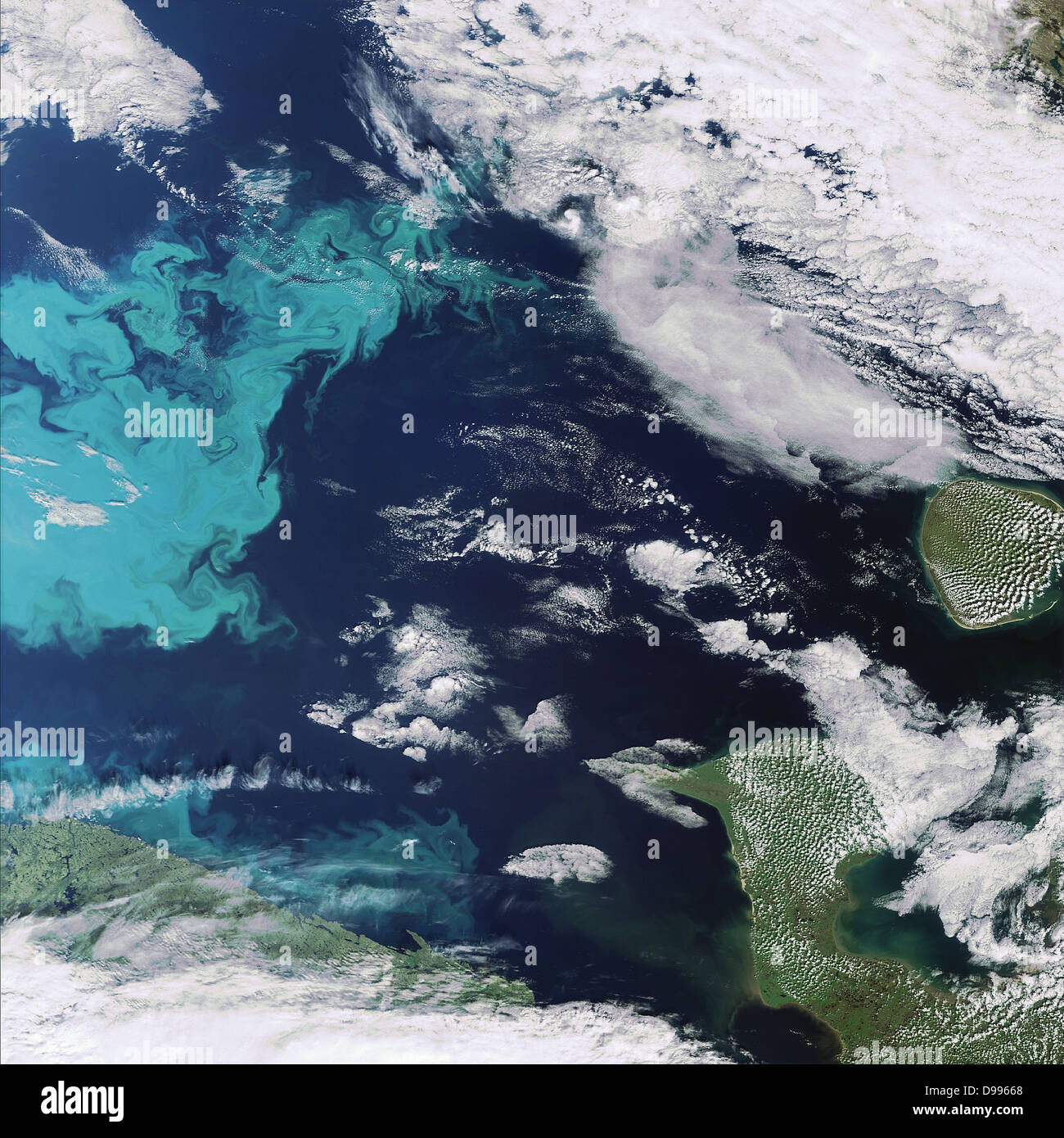 This Envisat image, 2008 with the Medium Resolution Imaging Spectrometer, captures a plankton bloom stretching across - Stock Image