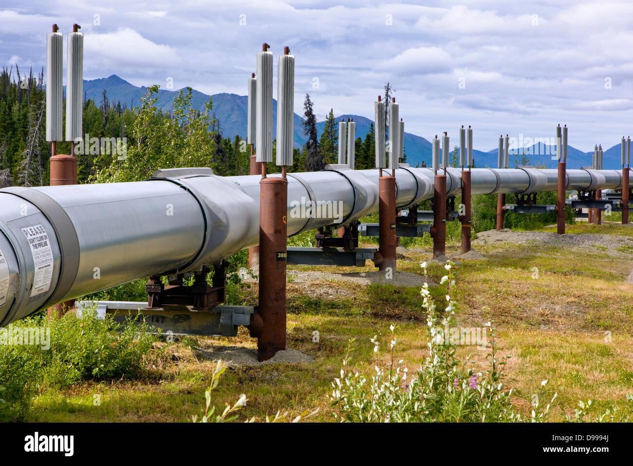 Aleyska, or Trans - Alaska Pipeline, Chugach Mountains, north of Valdez, Alaska, USA - Stock Image
