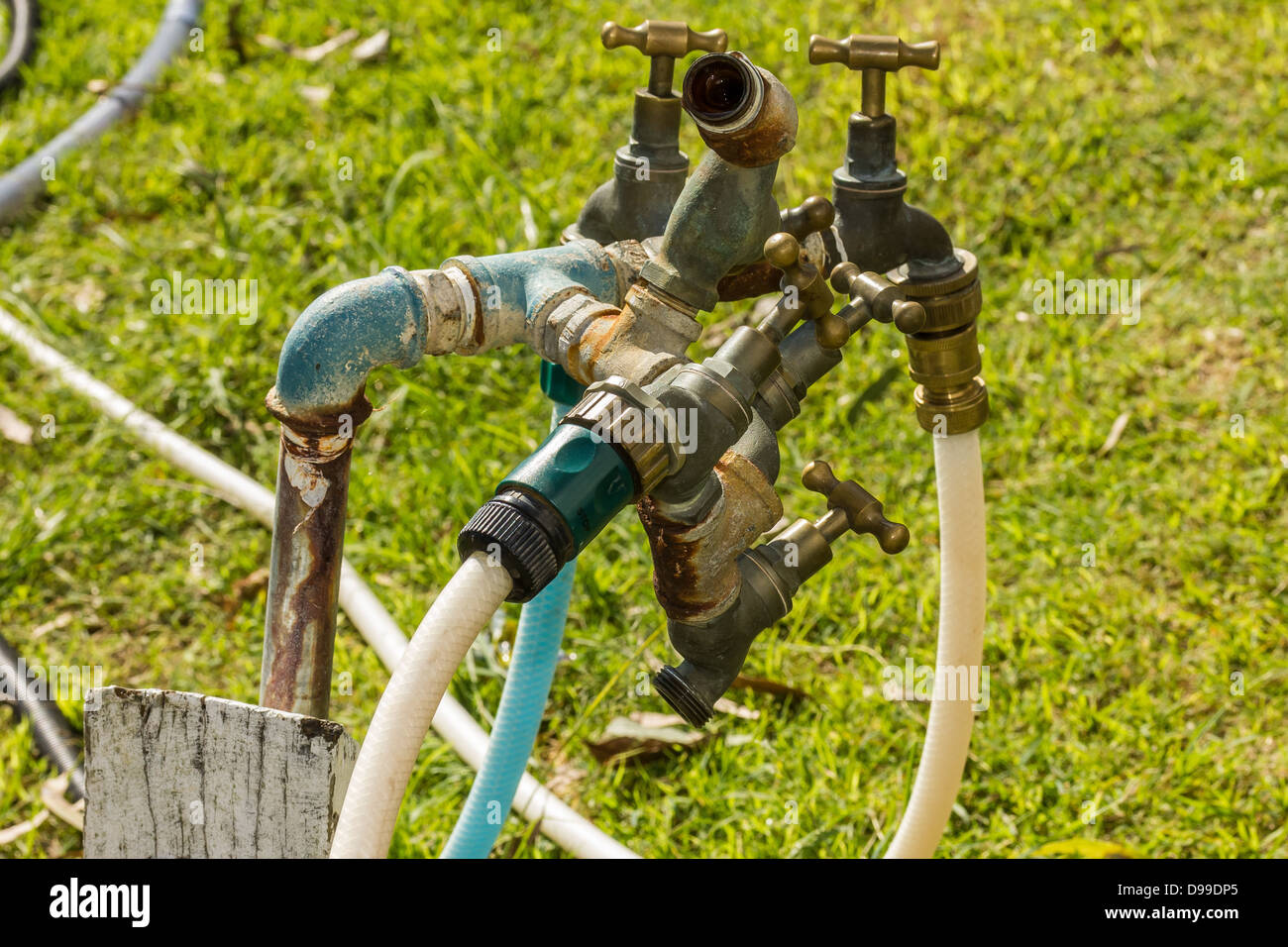 Water tap tree. - Stock Image