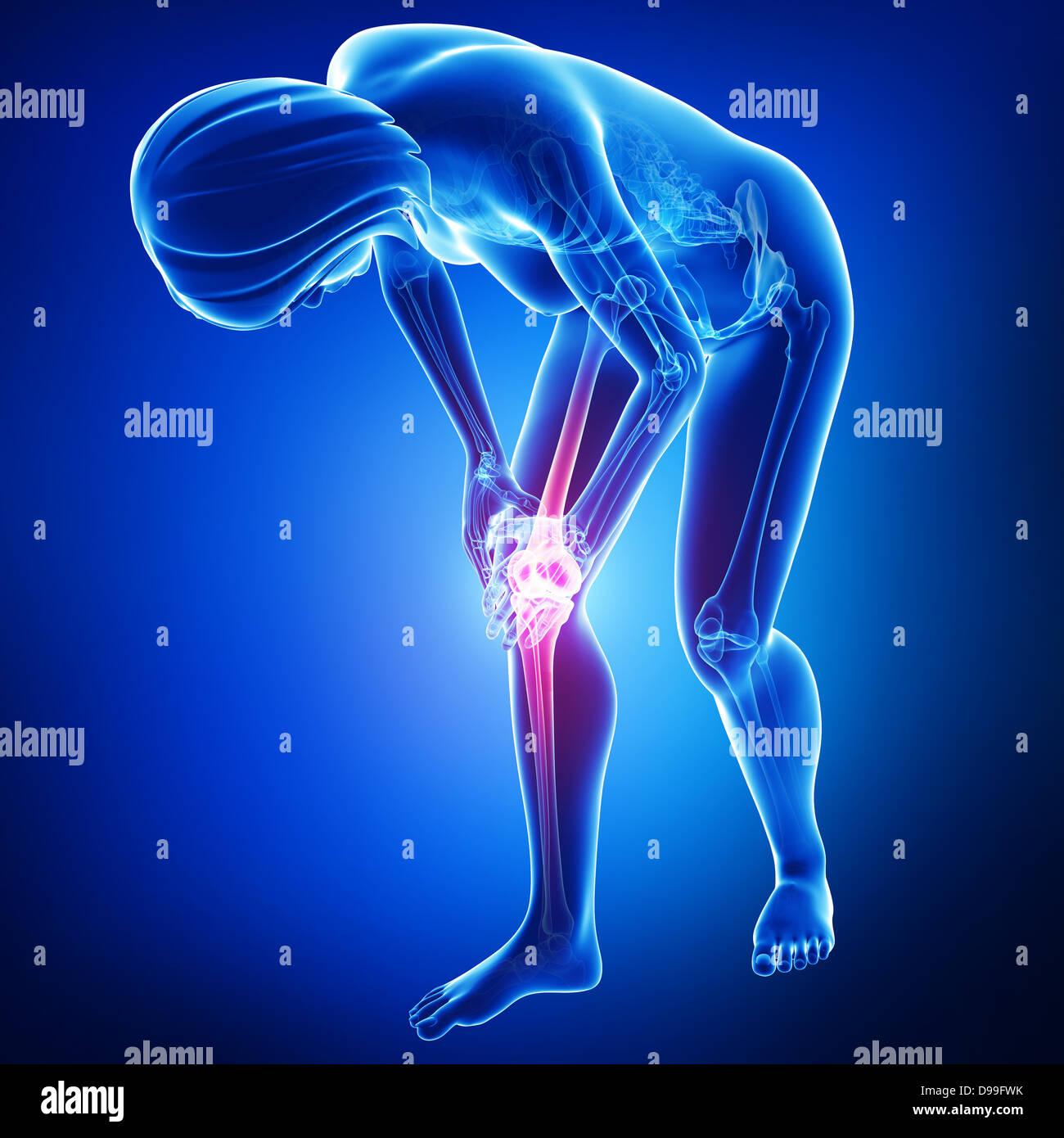 human knee pain anatomy in blue Stock Photo: 57373055 - Alamy