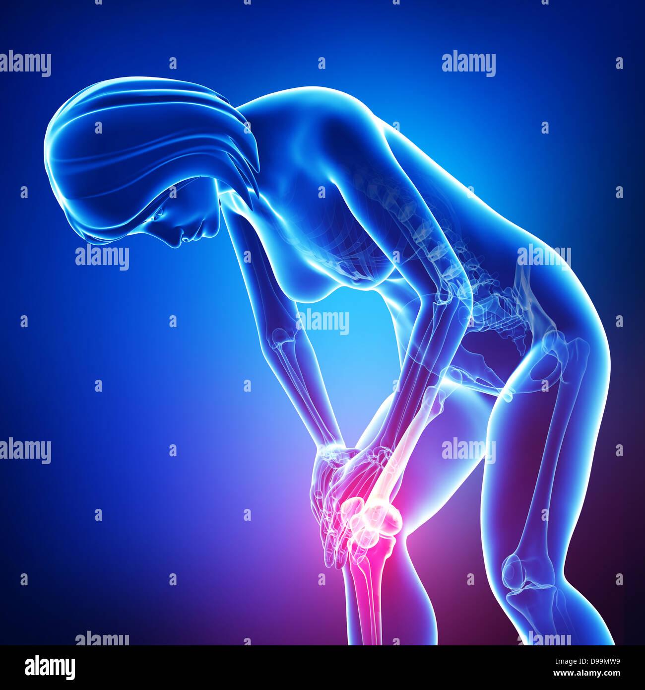 Human knee pain anatomy Stock Photo: 57376965 - Alamy