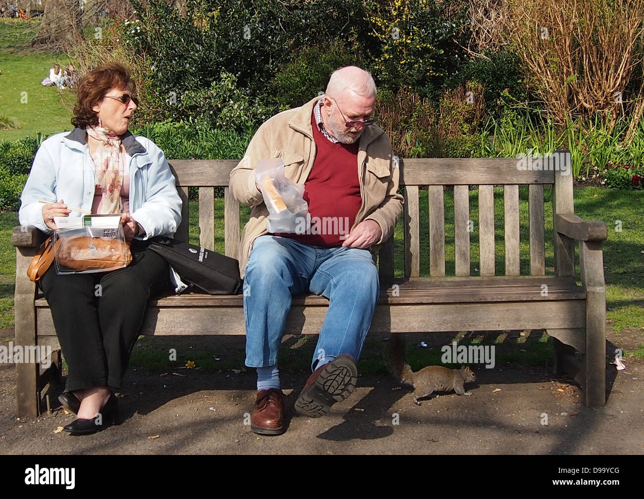 Couple on park bench startled by squirrel - Stock Image