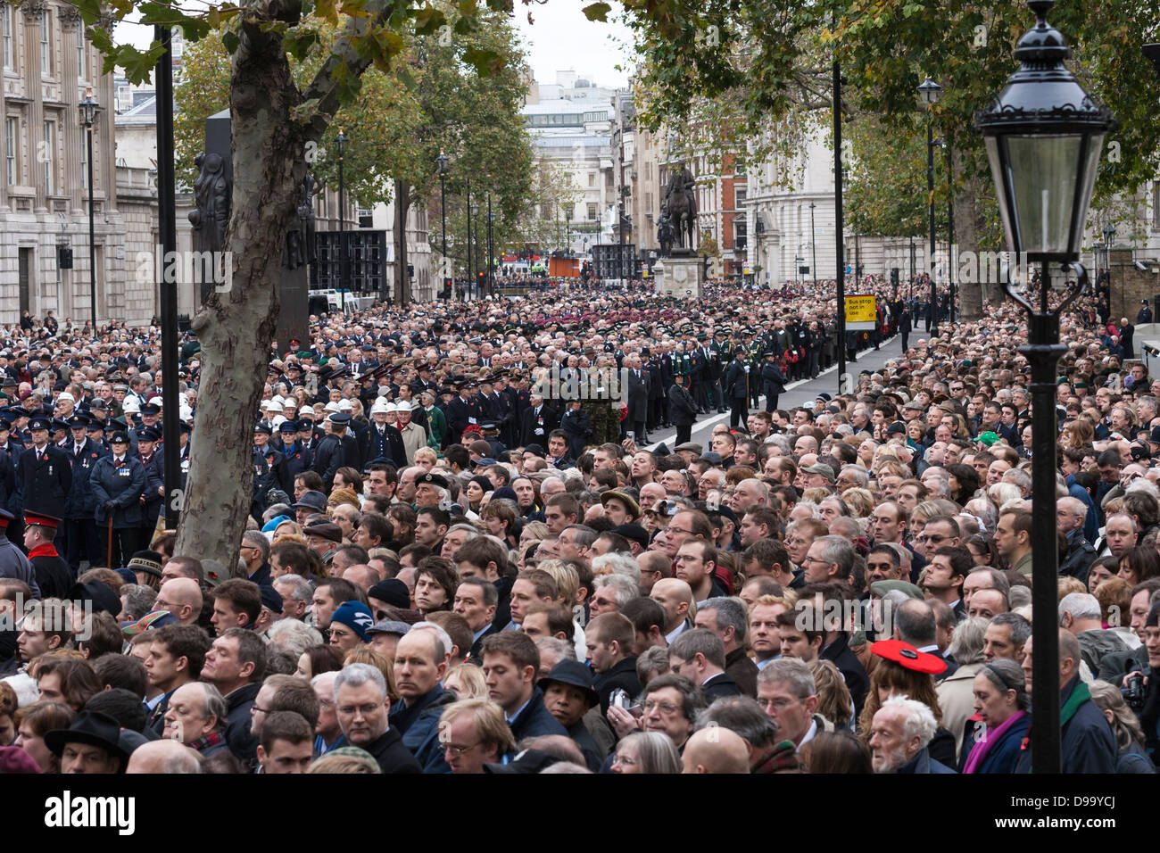Large crowd at the Cenotaph in Whitehall, London on Remembrance Sunday with a woman wearing a distinctive red poppy - Stock Image