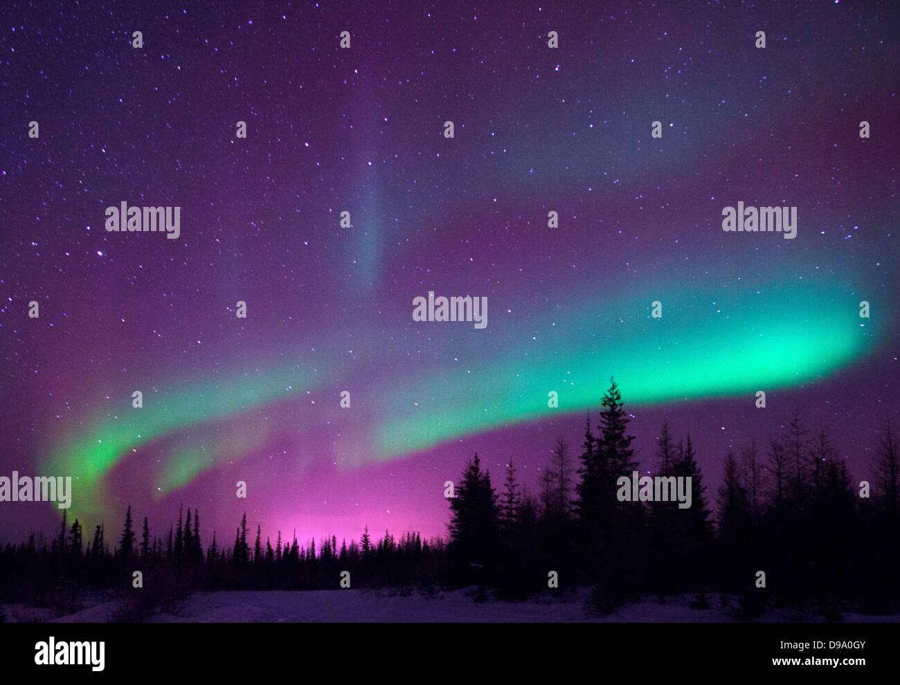 Northern Lights of Churchill , Manitoba - Stock Image