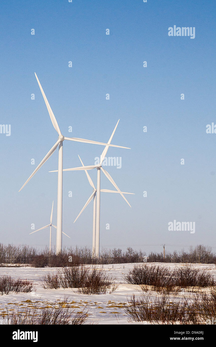 wind, green, power, turbine, inventive, landscape, Castor, Alberta, wind project, clean energy, energy, Alberta, - Stock Image