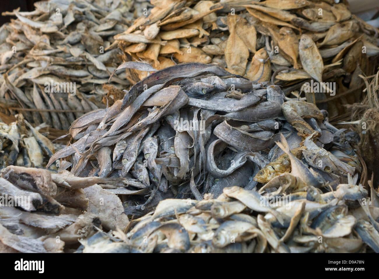 Asia, India, Karnataka, Madikeri, dried fish on the market - Stock Image