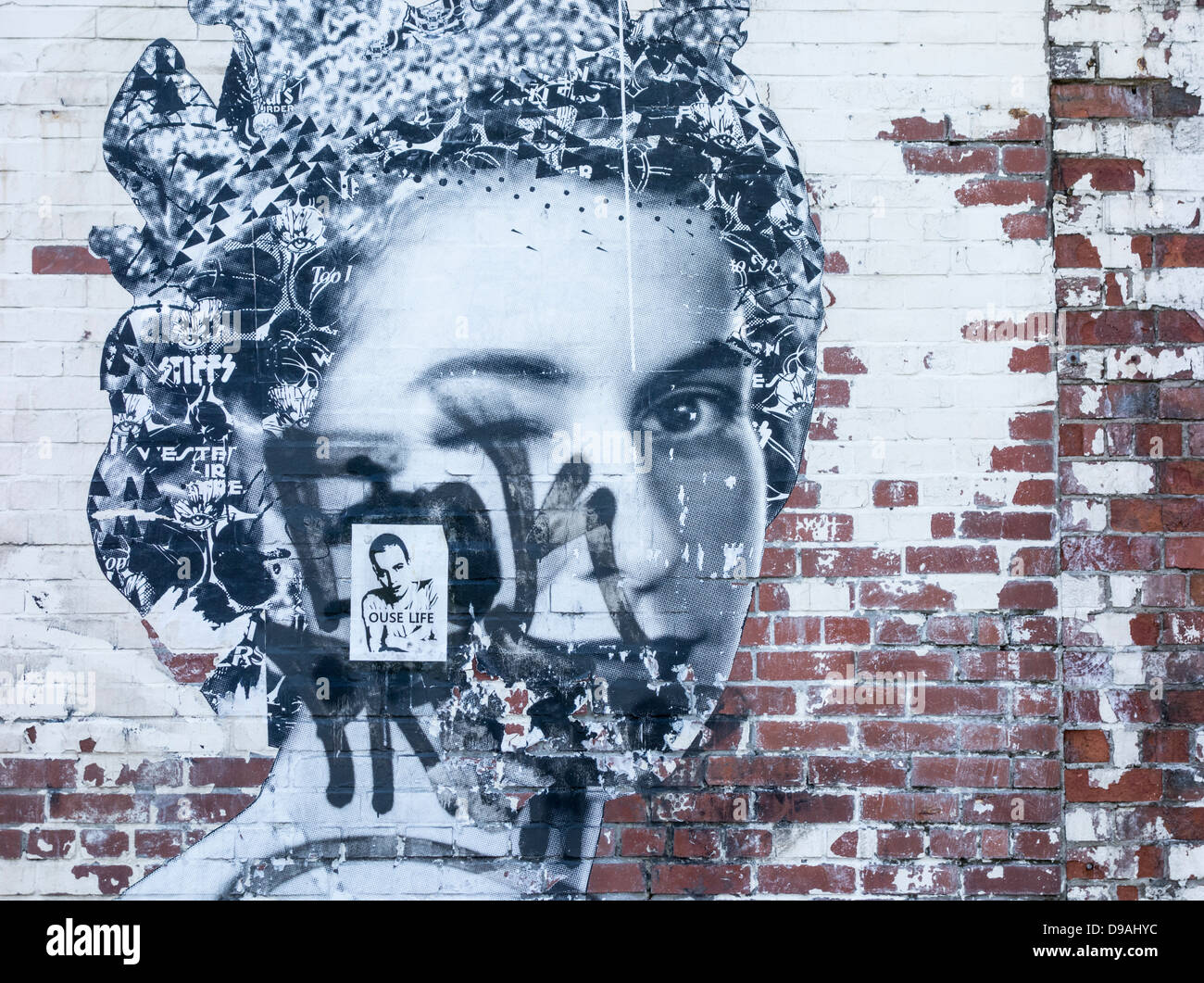 Graffiti of Queen Elizabeth on brick wall in Ouseburn, Newcastle, England, UK - Stock Image