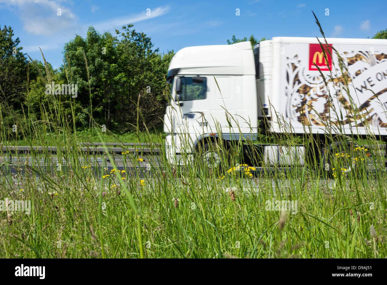 Uncut grass and wildflowers on Motorway grass verge. UK - Stock Image