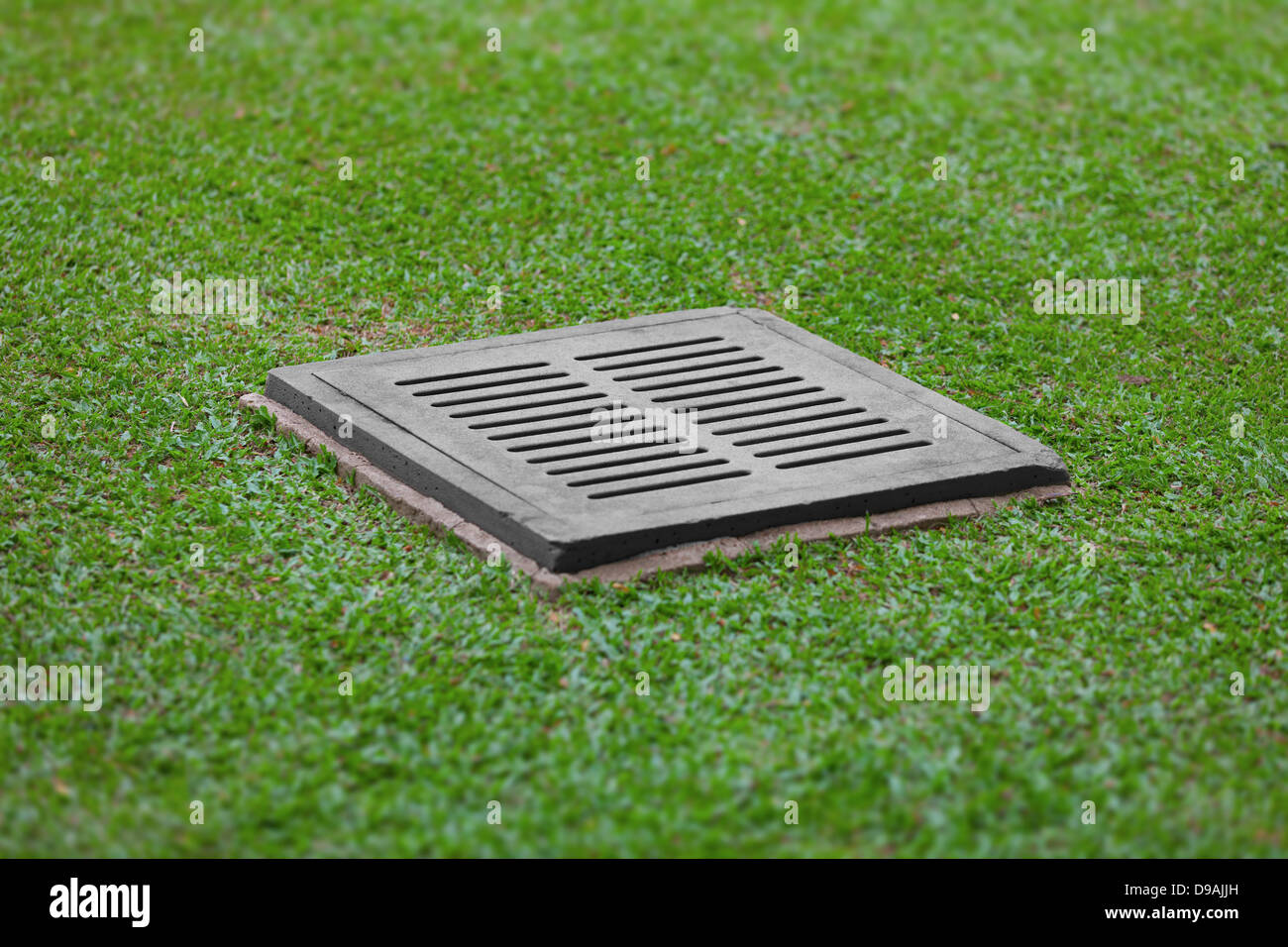 the sewer grate on the lawn drainage for heavy rain stock image - Garden Drainage