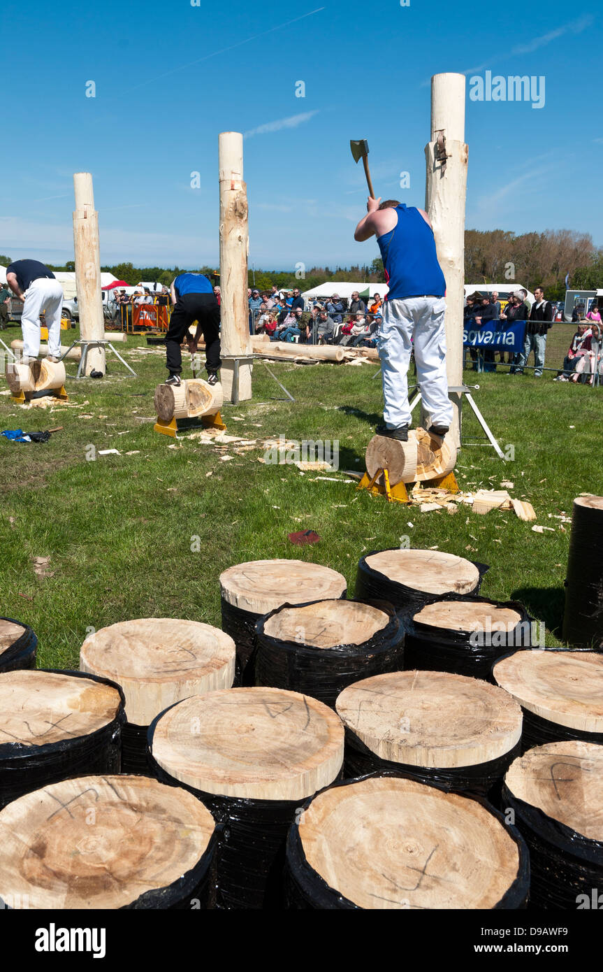 St Asaph Woodfest Countryfile May 31st 2013 - Stock Image