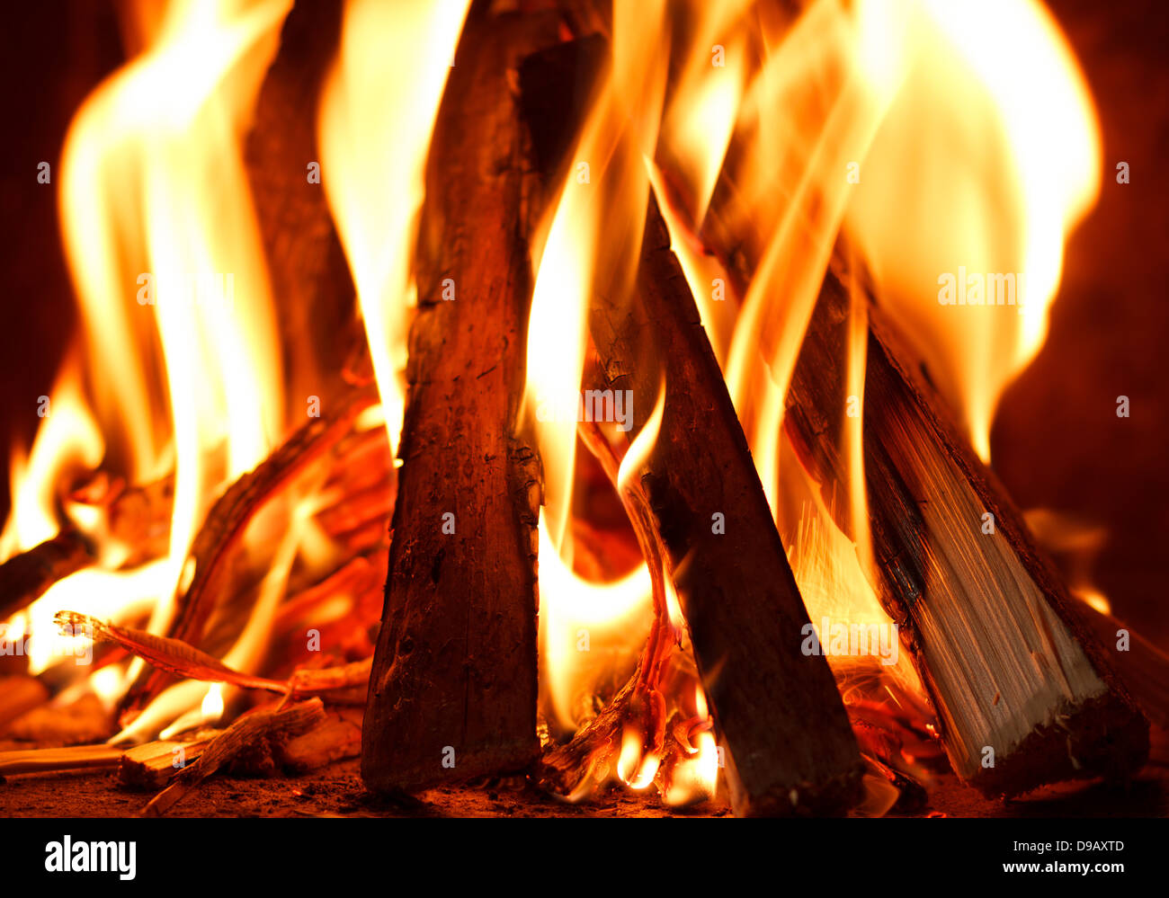 Close up of firewood burning in fire - Stock Image